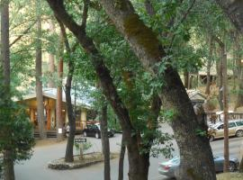 Yosemite Bug Rustic Mountain Resort, lodge in Midpines