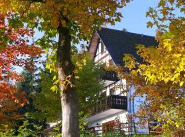 Pension Stiegelmeier, hotel near Schanzenhang, Winterberg