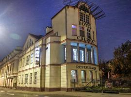 Hotel Calisia, pet-friendly hotel in Kalisz