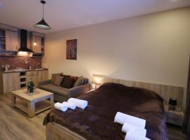 "Aparthotel in Bakuriani ""The Valley"", hotel in Bakuriani"
