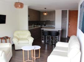 Departamentos Parts Concepción, apartment in Concepción