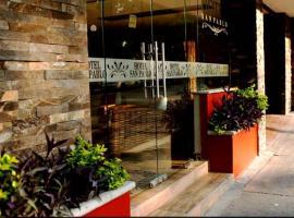 Hotel San Pablo, hotel in Colima