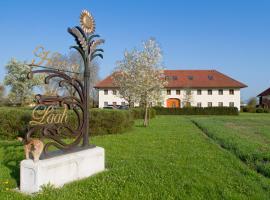 Bauernhofpension Herzog zu Laah, guest house in Linz