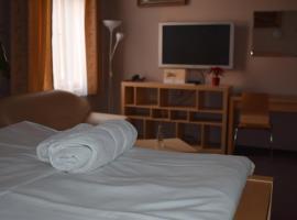 Hotel Zlatá Štika, hotel a Pardubice