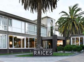 Hotel Boutique Raíces, hotel en Curicó