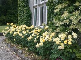 Courtyard Cottage, hotel in Carlow