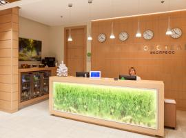 Airhotel Express, hotel near Moscow Domodedovo Airport - DME,