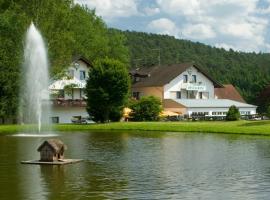 Hotel Pappelhof, hotel near Scharteberg mountain, Weidenbach