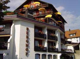 Panoramahotel Berghof, hotel in Baiersbronn