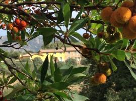 Agriturismo Is Conchisceddas, farm stay in Gonnosfanàdiga