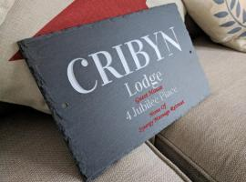 Cribyn Lodge, B&B in Brecon