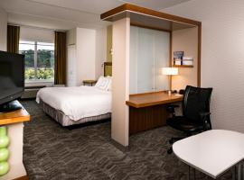 SpringHill Suites Pittsburgh Southside Works, hotel in Pittsburgh