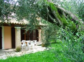 Villa Olive apartments, pet-friendly hotel in Ýpsos