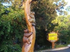 Giant Oaks Lodge, lodge in Running Springs