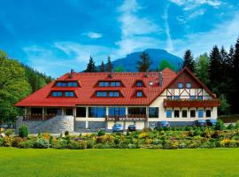 Hotel Relaks Wellness & SPA, отель в Карпаче