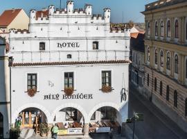 Hotel Bílý Koníček, hotel in Třeboň