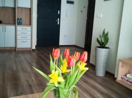 Modern, apartment in Suwałki