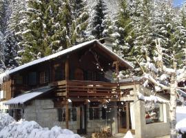 Chalet vue Mont-Blanc, chalet i Chamonix-Mont-Blanc
