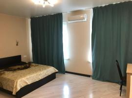Studio on Kolpakova 41, pet-friendly hotel in Mytishchi