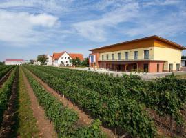 Penzion Skoupil, hotel ve Velkých Bílovicích