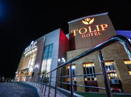 Tolip Family Park Hotel, luxury hotel in Cairo