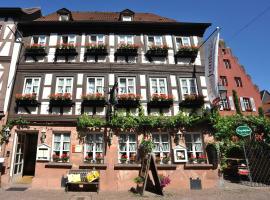 Wein-und Gasthof Zipf, Hotel in Miltenberg