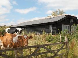 Bull Farm Studios, hotel in Winchester