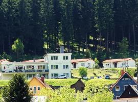 Pension Am Waldesrand, Hotel in Ilmenau