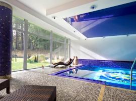 Spa & Wellness Hotel St. Moritz, отель в городе Марианске-Лазне