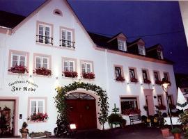 Gasthaus Zur Rebe, inn in Mehring