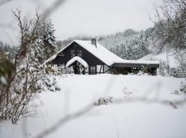Romantikhütte Neuastenberg, holiday home in Winterberg