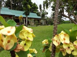 Wisma Batu Mandi, hotel in Bukit Lawang