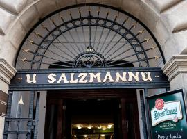 Penzion U Salzmannů, penzion v Plzni