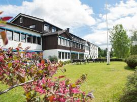 Morgedal Hotel, hotell i Morgedal