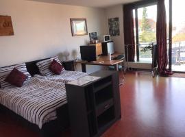Bonne Futte Homestay, vakantiewoning in Breskens