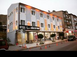 Gulistan Hotel, hotel in Zara
