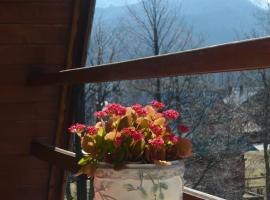 Pokoje gościnne w górach, homestay in Kościelisko