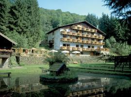 Wolffhotel, hotel in Kopp