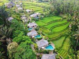 Nau Villa Ubud, villa in Tegalalang