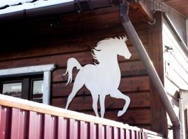 Апартаменты Белая лошадь, отель с удобствами для гостей с ограниченными возможностями в Костроме