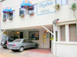 Hotel Capric, hotel in Viña del Mar