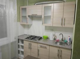 1-room apartment in the center, апартаменты/квартира в Запорожье