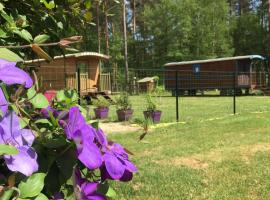 Roulottes du Chalet des Pins, glamping site in Rougeou