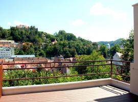 Vila Alba Brasov, pensiune din Brașov