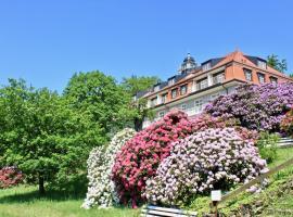 Ferienwohnung Natur und Kunst, Ferienwohnung in Dresden