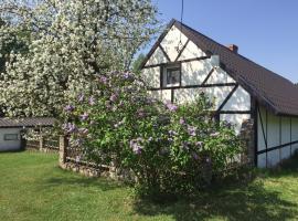 Samodzielny Dom Przy Lesie, hotel near Brodnica Lake District, Tereszewo