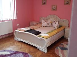 Casa Ade, apartment in Călimăneşti