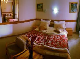 Hotel Berr, hotel in Sarajevo