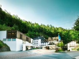 Hotel Zugbrücke Grenzau, hotel in Höhr-Grenzhausen