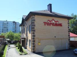 Отель Теремок Пролетарский, отель в Твери